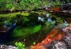Khó tin nhưng có thật: Con sông có 5 màu sắc biến đổi theo mùa