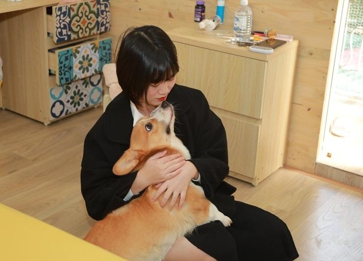 Tổ ấm nhiều chó mèo của vợ chồng MC Trần Ngọc 'Hãy chọn giá đúng'