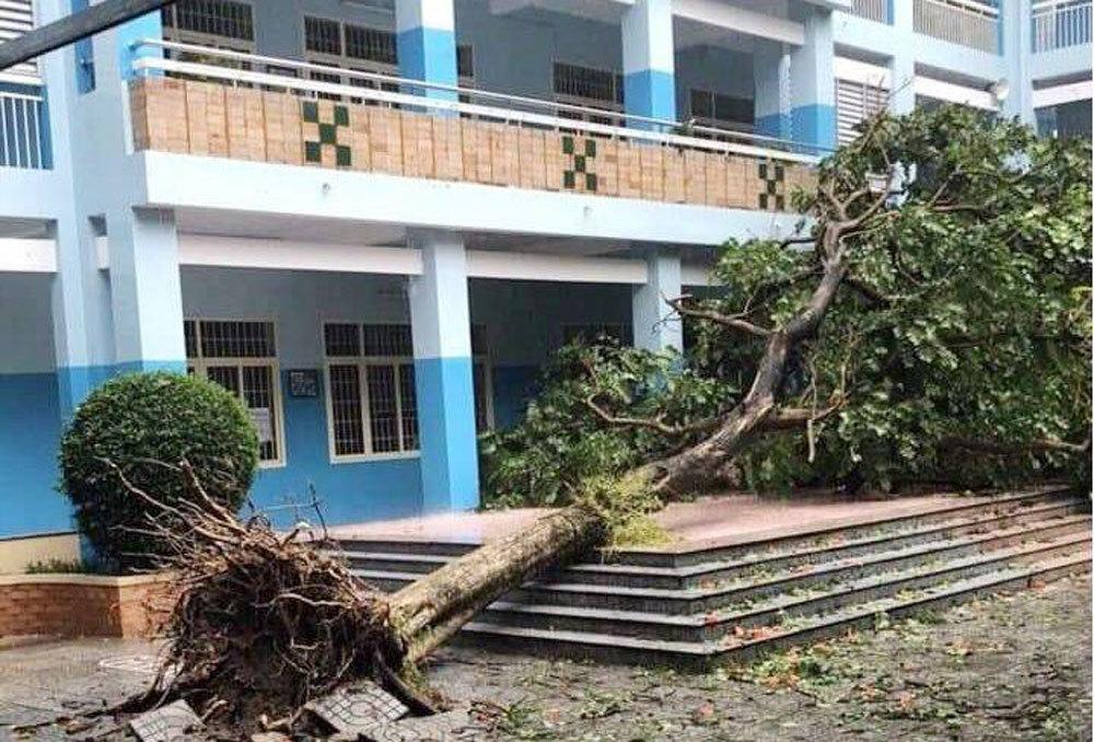 Bão số 9 'đánh' thẳng Đông Nam Bộ, cây ngã đè chết người đi đường
