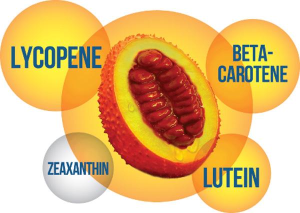 Lợi ích của hoạt chất chống ôxy hóa trong gấc