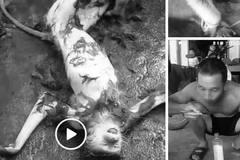Chặt đầu khỉ đăng Facebook gây phẫn nộ: Lời khai các đối tượng