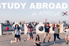 Hiện thực hóa giấc mơ du học Hàn Quốc cùng AVT Education