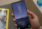 Galaxy S10+ vừa đạt được giấy phép chứng nhận sớm