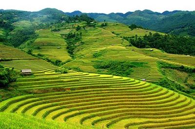 Đồng Văn - điểm đến nguyên sơ, đặc sắc ở Quảng Ninh