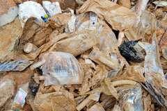Học cách phân loại rác để không bị phạt đến 20 triệu đồng