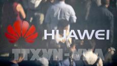 New Zealand cấm sử dụng công nghệ của tập đoàn Huawei trong dự án 5G