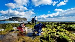 Khám phá thiên đường du lịch nổi tiếng qua phim ảnh ở Hàn Quốc