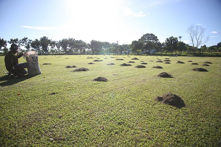 Hàng chục công nhân cắt cỏ, đổ cát chuẩn bị sân tập cho tuyển Việt Nam