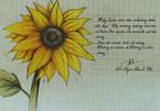 Đăng ảnh vẽ hoa hướng dương trên Facebook được tặng 30.000 đồng cho bệnh nhi?
