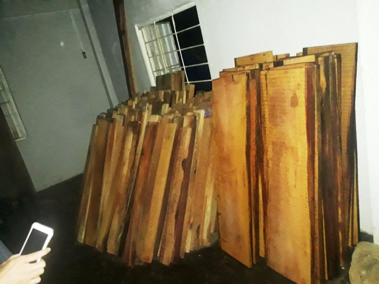 thủy điện,Quảng Nam,gỗ rừng