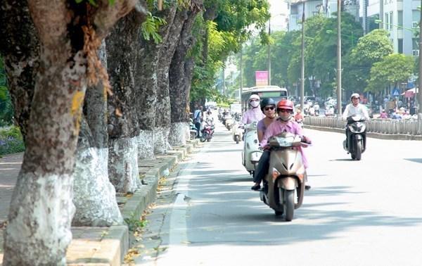 Dự báo thời tiết 1/12: Hà Nội sáng mưa, trưa ấm tưng bừng 29 độ