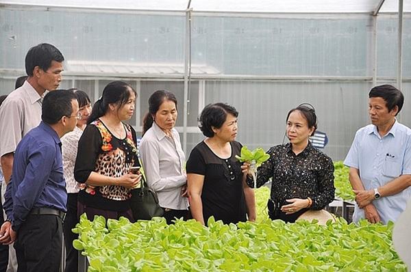 du lịch nông nghiệp công nghệ cao