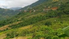 Thanh Hóa: Chủ tịch Hội Nông dân xã treo cổ chết trên núi