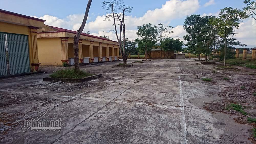 Giật mình chợ ở Ninh Bình, ki-ốt bỏ hoang cho trâu bò phóng uế