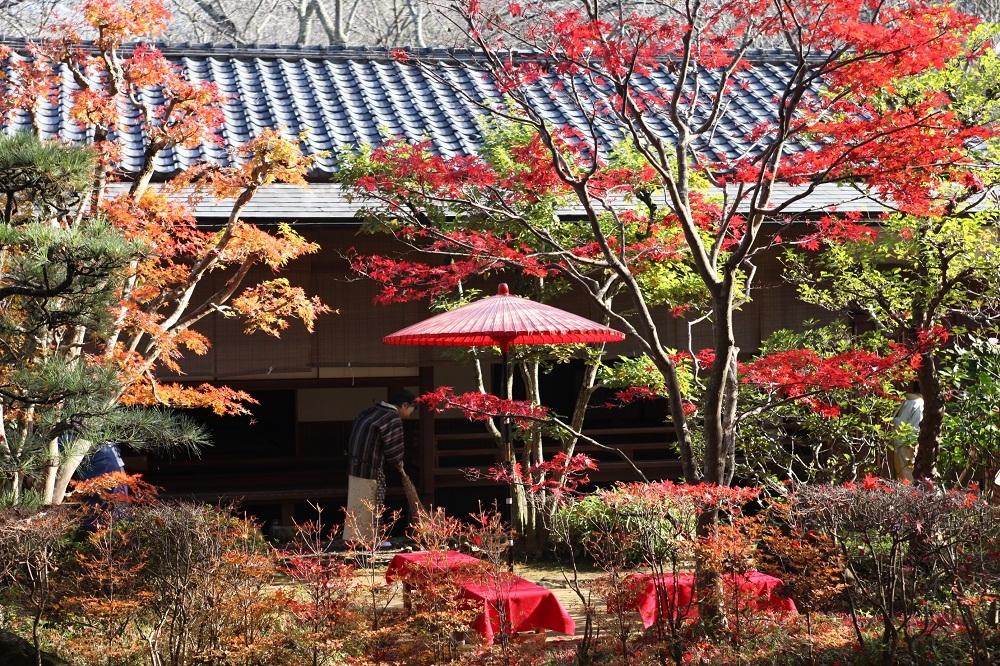 Du lịch Nhật Bản,Tỉnh Chiba