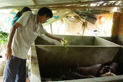 Giảm nghèo Đà Nẵng về đích sớm 2 năm