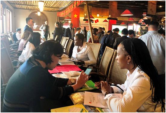 Xuất khẩu gạo Việt vào châu Phi qua cửa Nam Phi