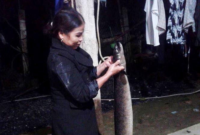 Kéo lưới trên sông, nam thanh niên bắt được cá 'khủng' dài 1,6m