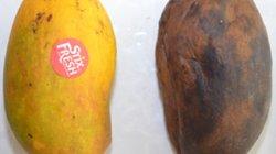 'Bảo bối' giúp hoa quả để suốt mấy tuần vẫn tươi rói