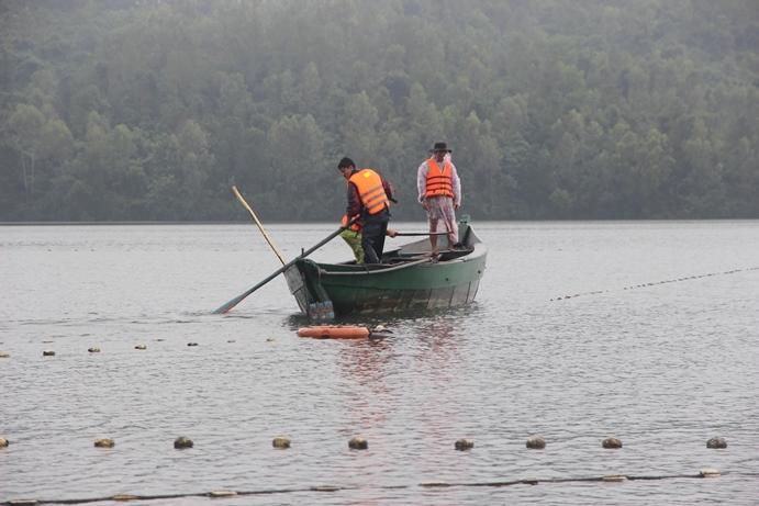 Quảng Nam xả cửa phòng nước dâng, hàng tấn cá theo dòng lũ dính lưới