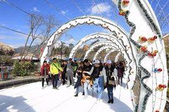 'Con đường mùa đông' trên Fansipan 'đốn tim' hàng ngàn du khách