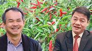 Làm mạnh ở Thủ Thiêm, tỷ phú Trần Bá Dương thu nguồn tiền lớn