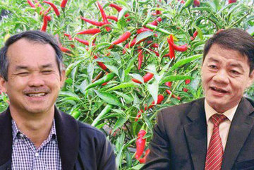 Ông Trần Bá Dương quyết vụ lớn, gom thêm hơn 13 nghìn tỷ