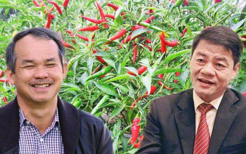 Đẩy mạnh phát triển tại Chu Lai, doanh thu Thaco tăng mạnh