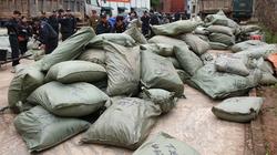 Triệt phá đường dây buôn lậu tại tỉnh Lạng Sơn