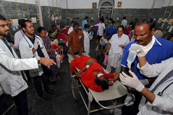 Chất kịch độc trong món cơm khiến 15 người Ấn Độ thiệt mạng