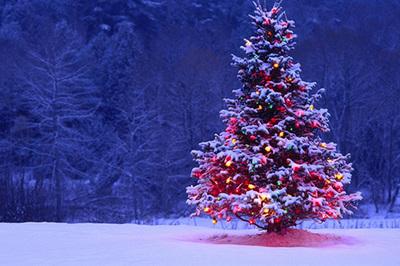 Những điều thú vị về lễ Noel