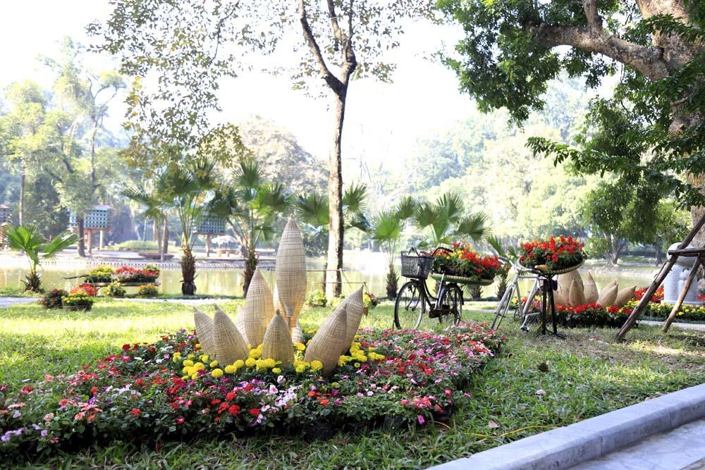 Say sưa chụp ảnh miễn phí ở đường hoa đẹp mê ly giữa Thủ đô