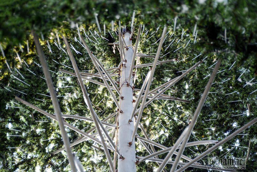Noel 2018: Thiếu nữ say đắm bên những cây thông to kỳ dị