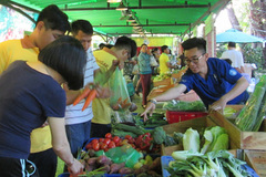 Chợ phiên nông sản 'hút' dân thành thị