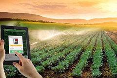Học làm nông dân 4.0 nhờ mạng internet