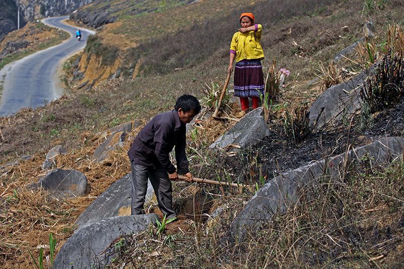 Cao nguyên đá Đồng Văn,Hà Giang