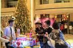 Gần 60 khách sạn Mường Thanh trang hoàng đón Giáng Sinh
