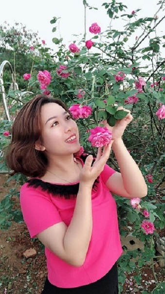 Sơn La: Mê mẩn vườn hoa hồng đẹp như tranh trị giá tiền tỷ