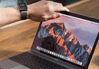 Hệ điều hành macOS High Sierra lại gặp lỗi bảo mật mới