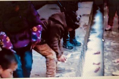 Học sinh đổ sữa xuống cống xôn xao mạng xã hội
