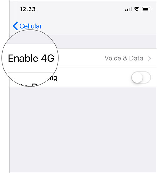 Cách sửa lỗi kết nối 3G/4G trên iOS 12.1.2