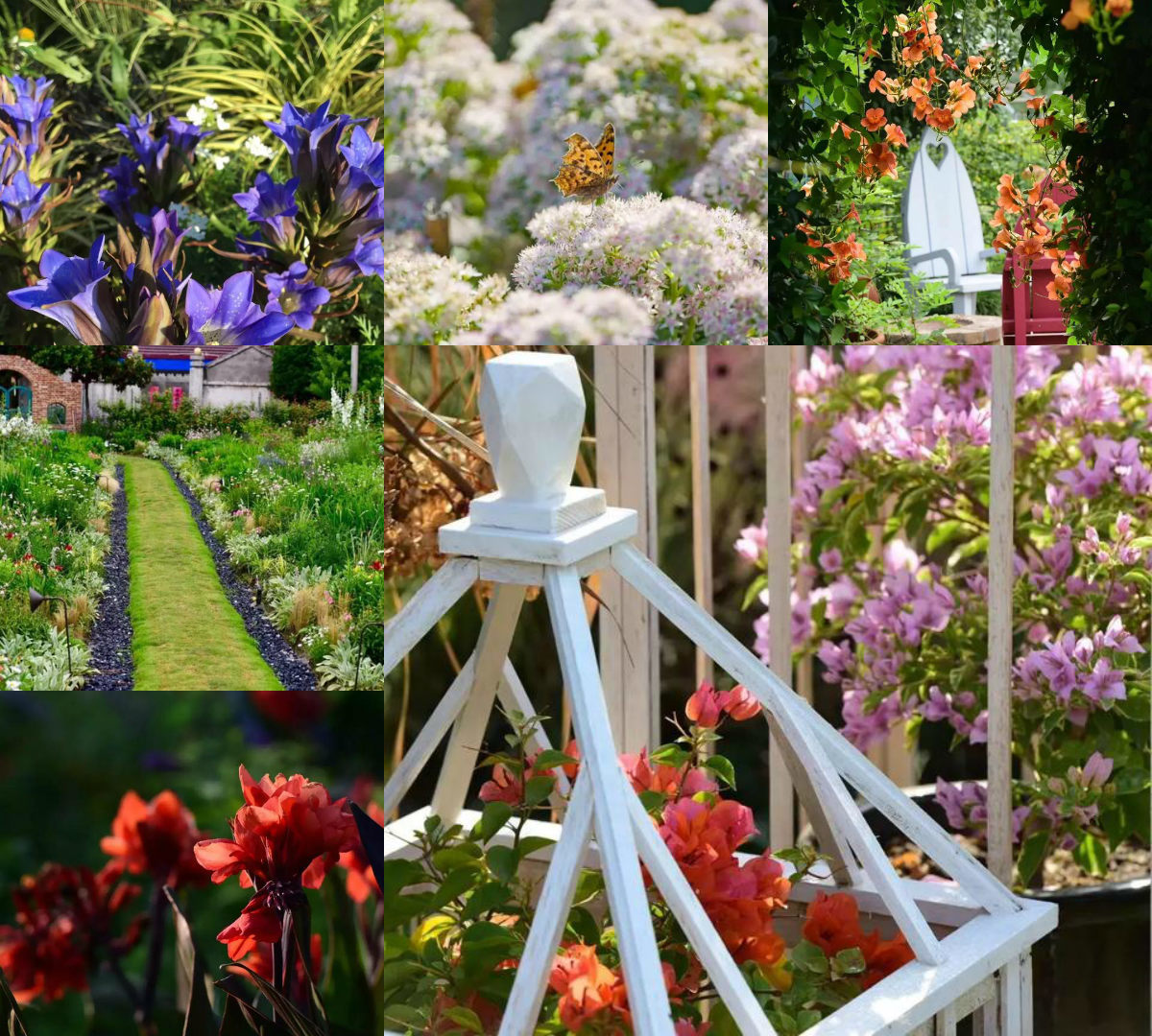 không gian sống,Sân vườn đẹp