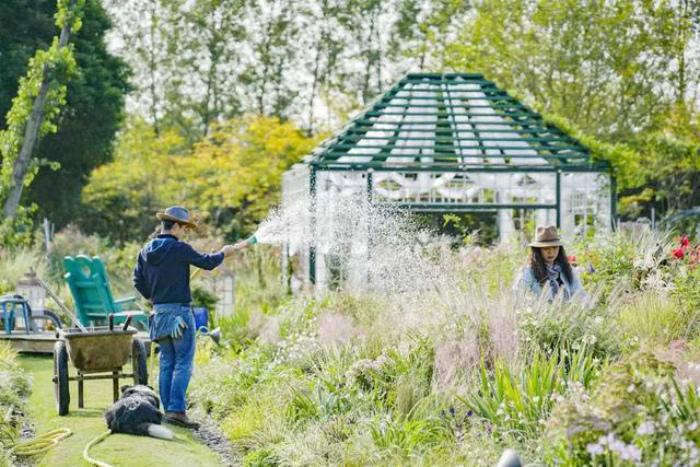 Vợ chồng giám đốc bỏ phố về quê làm nông dân, xây khu vườn tuyệt đẹp