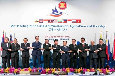 """Nông nghiệp là """"điểm tựa"""" của các nền kinh tế ASEAN"""