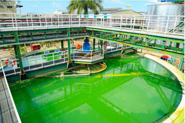Đầu tư bảo vệ môi trường ở Ajinomoto Việt Nam