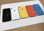 Sau nhiều chê bai, iPhone Xr gây bất ngờ khi bán chạy nhất tháng 11