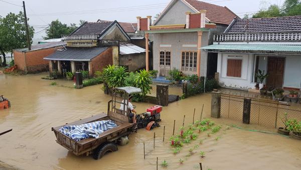 xả lũ,Phú Yên,ngập lụt