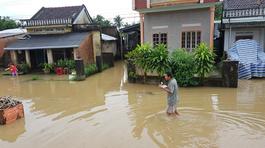 Phú Yên: Mưa lớn lụt nhà dân, nhấn chìm hàng ngàn ha lúa