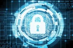 51 quốc gia và 150 công ty công nghệ cam kết chống tội phạm mạng