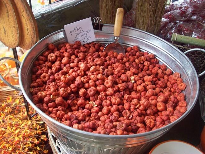 dưa hấu tí hon,Bắp cải tí hon,Bí ngô tí hon,Cà rốt tí hon,hoa quả nhập khẩu